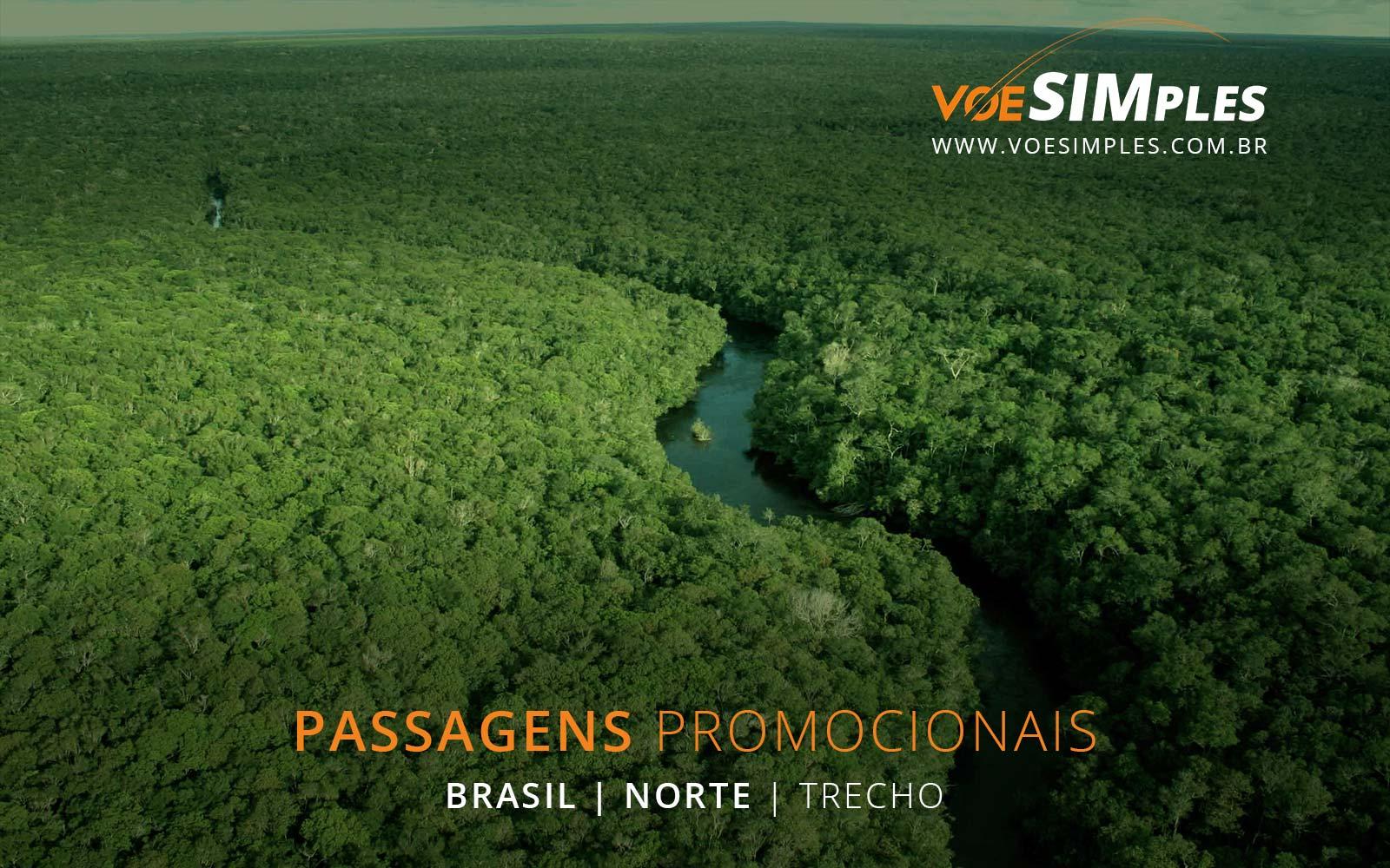 passagens-aereas-promocionais-brasil-voe-simples-passagem-aerea-promocional-barata-promocao-passagem-aviao-passagens-aereas-brasil-norte-trecho