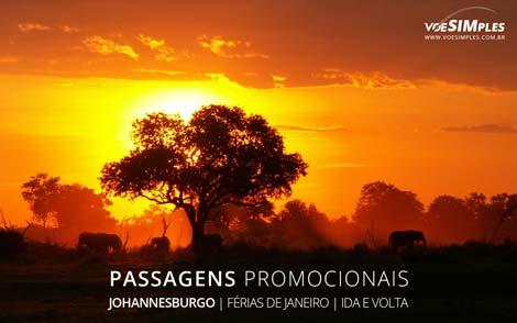 Passagem aérea para melhores destinos de férias de janeiro 2017 para a Joanesburgo