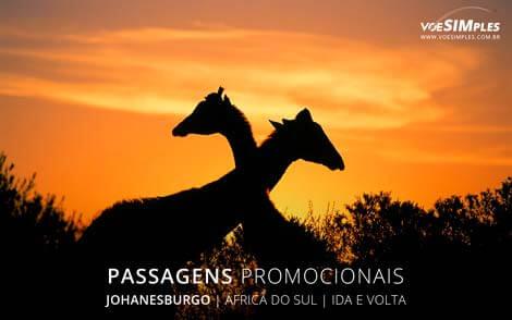 Passagem aérea para Johanesburgo