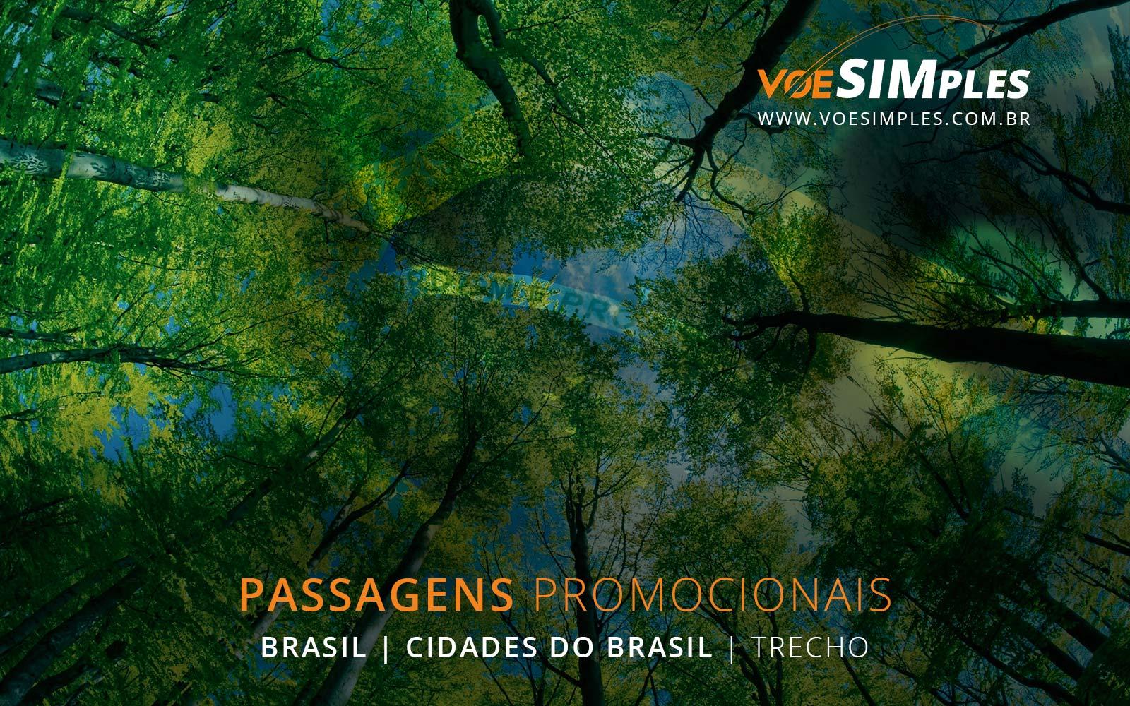passagens-aereas-promocionais-brasil-voe-simples-passagem-aerea-promocional-barata-promocao-passagem-aviao-passagens-aereas-brasil-diversos-destinos-trecho